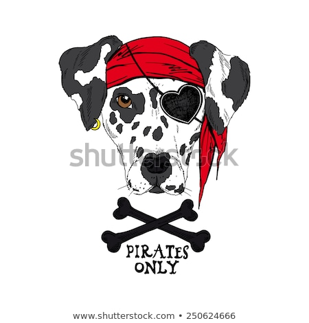 The girl - pirate with eye patch Stock photo © pzaxe