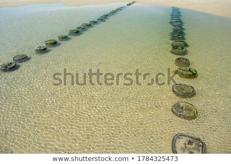 észak tenger Hollandia tengerpart víz tavasz Stock fotó © neirfy