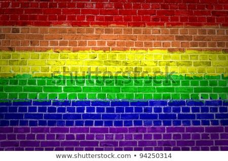Gökkuşağı bayrak tuğla duvar boyalı grunge doku Stok fotoğraf © creisinger