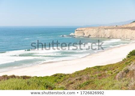 Zdjęcia stock: Rugged Cliffs Along An Ocean Coast