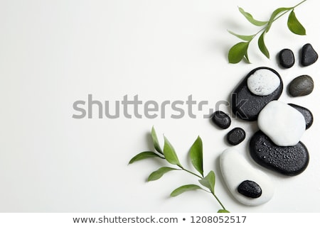 массаж камней Spa черный базальт Сток-фото © Farina6000