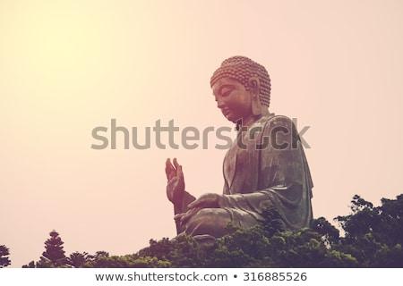 Seated statue of Buddha Stock photo © Farina6000