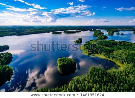High Water on the Amazon Stock photo © wildnerdpix