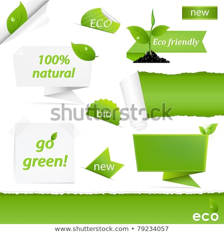 folha · verde · verde · papel · gradiente · páscoa - foto stock © cammep