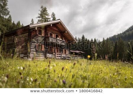 Alpino cabaña verano vista italiano cielo Foto stock © Antonio-S