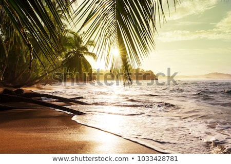 Beautiful deserted tropical beach Stock photo © jrstock