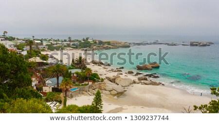 panorama · Cidade · do · Cabo · África · do · Sul · praia · mar · azul - foto stock © bradleyvdw