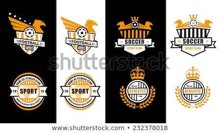 Sport School Insignias set Stock photo © Kaludov