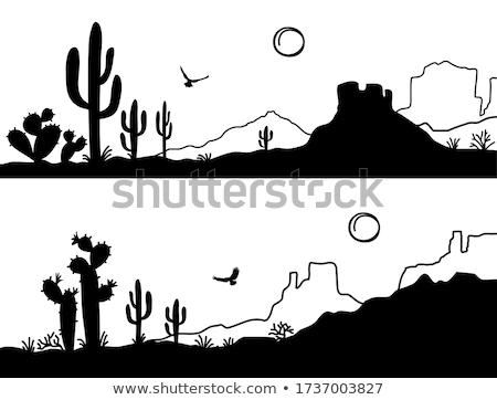 Jaskini czarno białe patrząc powrót otwarcie zielone Zdjęcia stock © THP