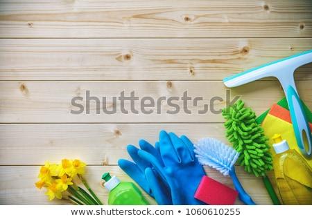 limpeza · outro · ferramentas · direito · alvejante · garrafa - foto stock © vectorminator