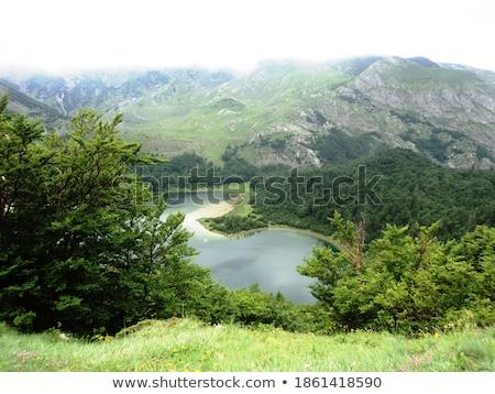 Bosnia Herzegovina montanas paisaje blanco casa árboles Foto stock © joyr