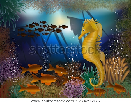 Underwater wallpaper with seahorse seafish, vector illustration Stock photo © carodi