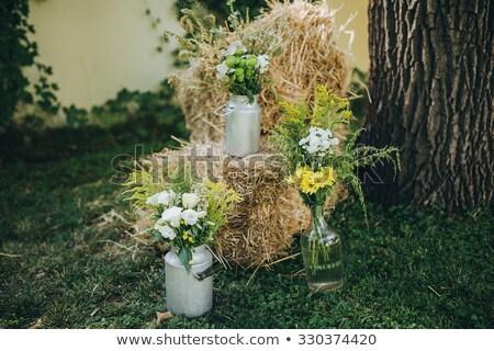 ülke gelin kuru ot yığını romantik kız düğün Stok fotoğraf © fanfo