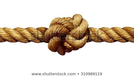 Kötél csomó izolált fehér erős tengerészeti Stock fotó © Lightsource