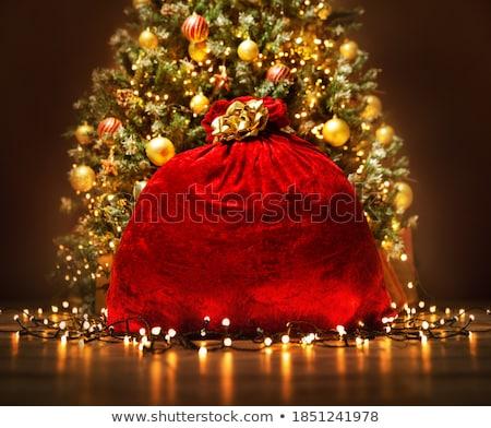 Сток-фото: Рождества · игрушками · гирлянда · красный · сумку