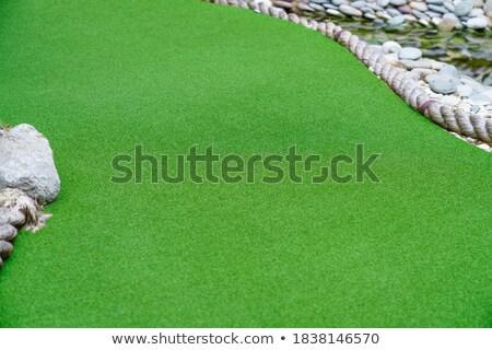 kicsi · mocsár · perem · tavasz · zöld · legelő - stock fotó © zurijeta