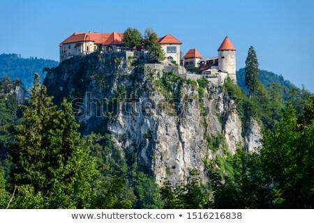 озеро · Церкви · предположение · небольшой · острове · Словения - Сток-фото © m_pavlov