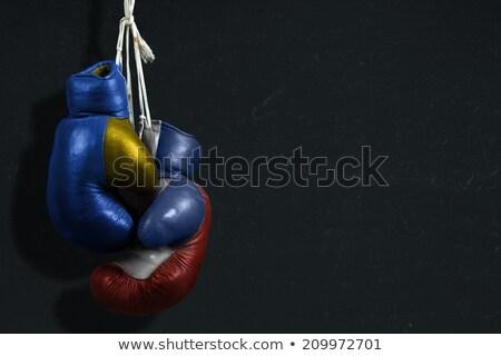 Boxe combinar Ucrânia Rússia negócio esportes Foto stock © Zerbor