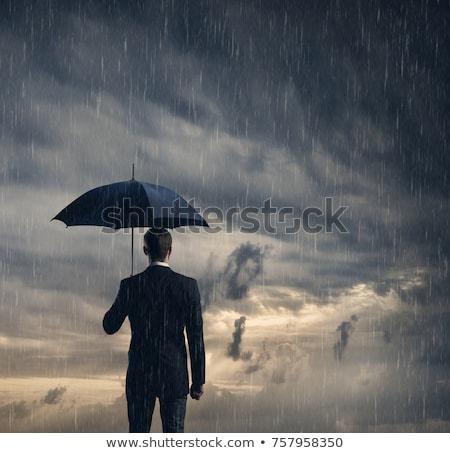 ビジネスマン 保護された 危機 球 嵐 ストックフォト © alphaspirit