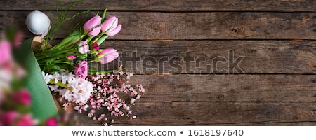 hyacinth on a vintage wooden board Stock photo © manera