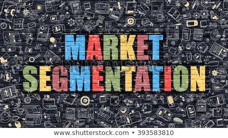 Market Segmentation Concept. Multicolor on Dark Brickwall. Stock photo © tashatuvango