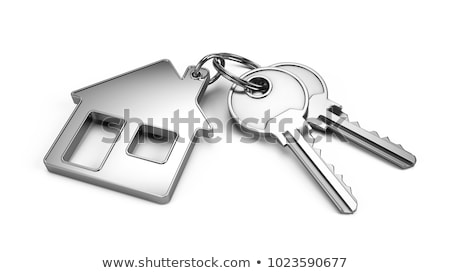 Rood · lening · knop · moderne · afbeelding - stockfoto © tashatuvango