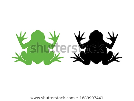 Green frog on white backgound Stock photo © bluering