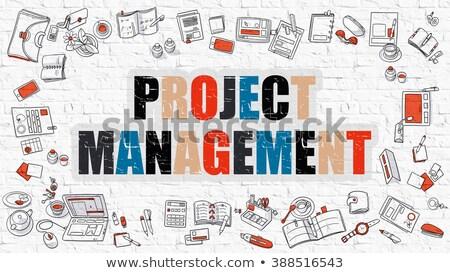 multicolor team management on white brickwall doodle style stock photo © tashatuvango
