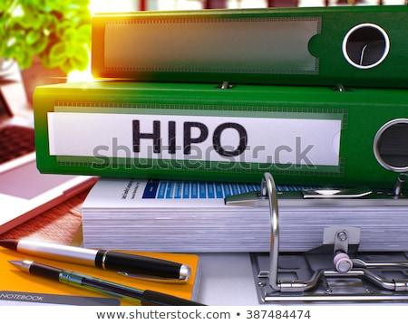 Hoog potentieel kantoor afbeelding business opschrift Stockfoto © tashatuvango