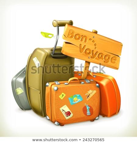 Retro maleta equipaje bolsa viaje vector Foto stock © LoopAll