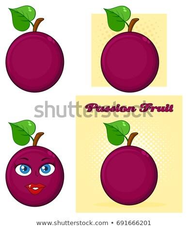 feuille · exotique · juteuse · fruits · vecteur · ensemble - photo stock © hittoon