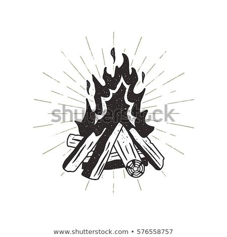 ikon · tábortűz - stock fotó © jeksongraphics