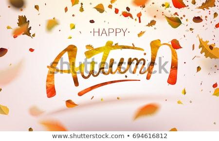 Vuelo hojas de otoño otono arce hojas vector Foto stock © kostins