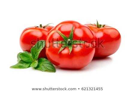 свежие саду помидоров базилик приготовления таблице Сток-фото © karandaev