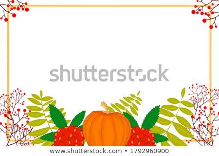 Stock photo: Season sale label with pumpkin, rowan leaves and berries