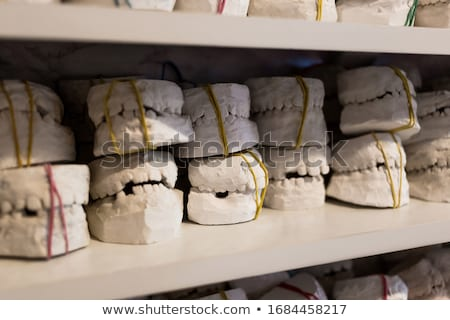 periodontitis dental anatomy stock photo © tefi