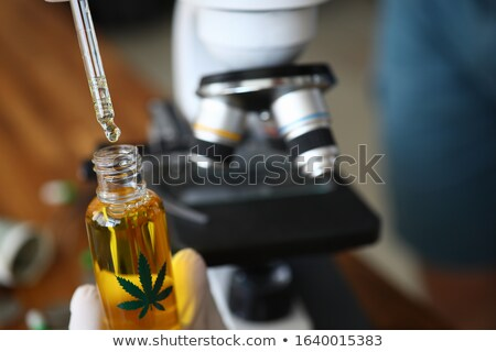 Cannabis leaves picking Stock photo © bdspn