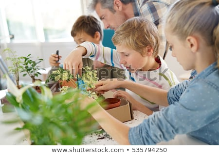 students and teacher with plant at biology class stock photo © dolgachov
