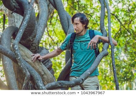 Férfi néz trópusi nedves erdő zöld Stock fotó © galitskaya