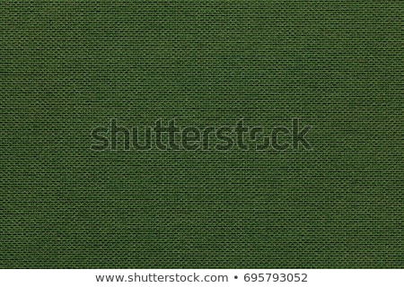 textured background rough fabric of green olive color Stock photo © ivo_13