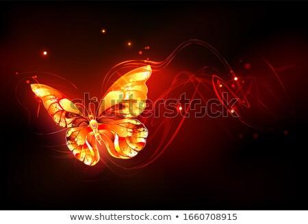 Vliegen brand vlinder vurig zwarte Stockfoto © blackmoon979