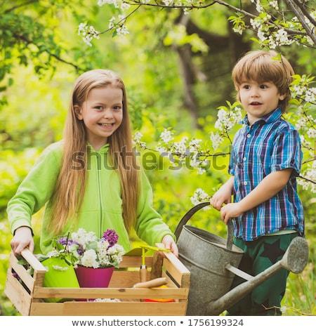 Little cute boy sows seeds in a flower pot in the garden Stock photo © galitskaya