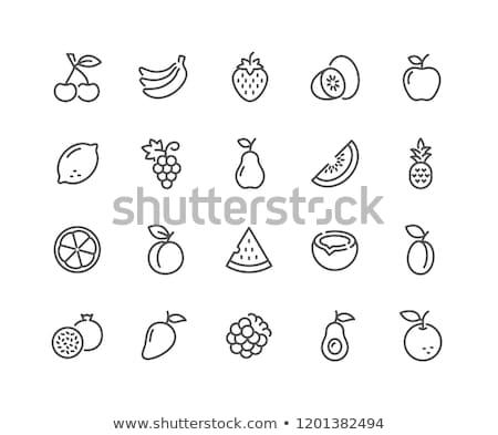 Tropical fruit icons set Stock photo © nosik