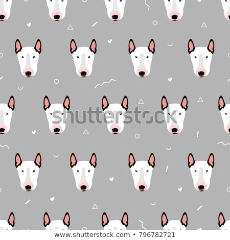 vector set of dog, bull terrier Stock photo © olllikeballoon