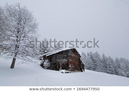 öreg fülke Alpok nyáridő Ausztria épület Stock fotó © michaklootwijk
