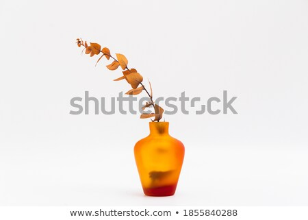 Fleur transparent vase maison restaurant Photo stock © robuart