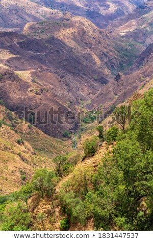 mountain landscape with canyon, Ethiopia Stock photo © artush