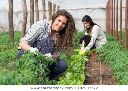 farming people working on field woman and man stock photo © robuart