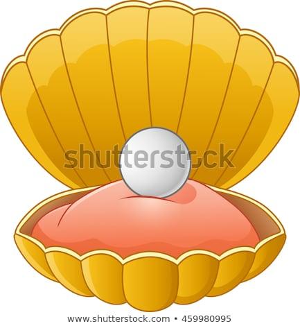 Kolorowy cartoon powłoki perła odizolowany biały Zdjęcia stock © cidepix