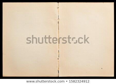 антикварная книга изолированный Сток-фото © Photooiasson